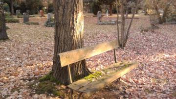 l_fotofriedhof2