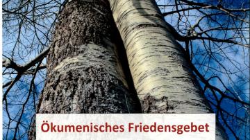 l_frieden2_001-1