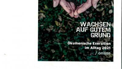 wachsen_001-1